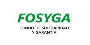 fosyga consulta certificado