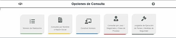 opciones de consulta rama judicial